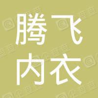 湖南省衡阳县腾飞内衣有限公司